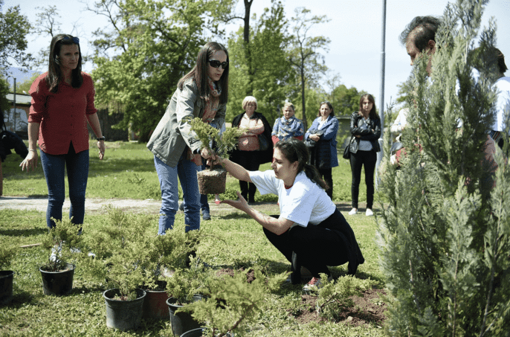 3300 TREES PLANTED BY VOLUNTEERS IN CITIES AROUND THE WORLD